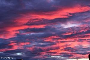 Boston - Sunrise(1)