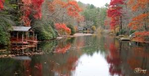 NC - Whitewater_creek