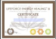 lifeforceenergyhealingiiapprenticeintrainingcertificationcoursegraduationcertificate